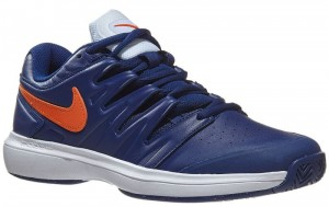 Buty do tenisa NIKE Air Zoom Prestige Leather (blue void)